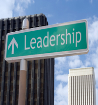 Case Study: The Search for Great Leadership