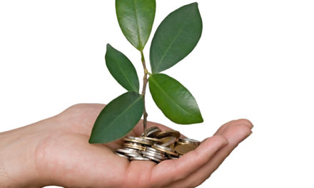 Businesses Link Sustainability Objectives to Executive Pay