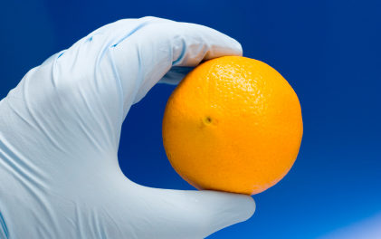 Why Genetically Modified Foods Are Not Labeled in U.S.