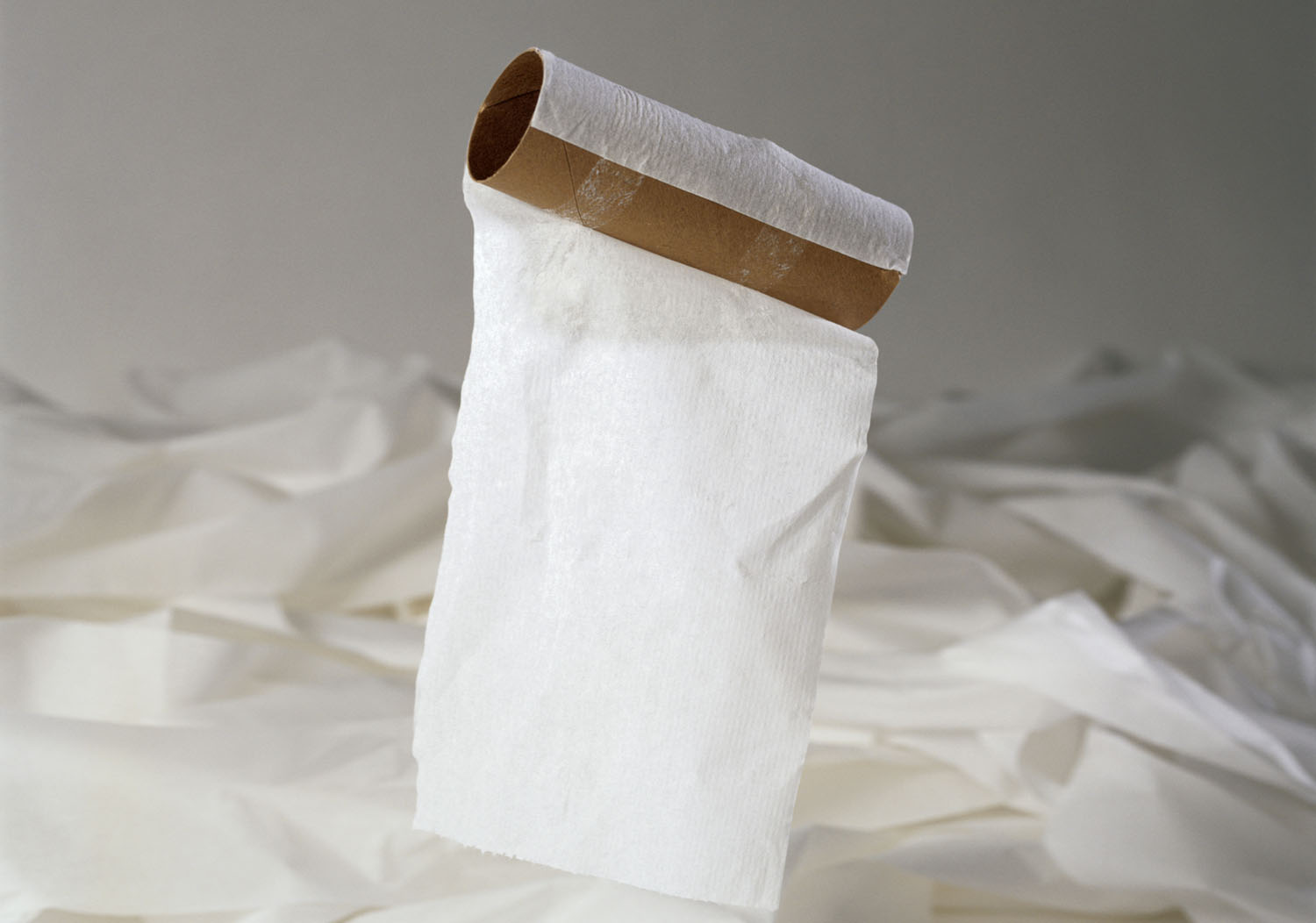 following kimberly clark s agreements on wood sourcing and earthtalk toilet paper