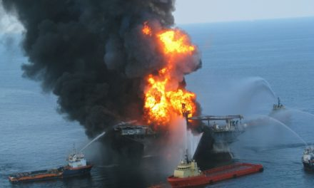 The Gulf of Mexico Two Years after the BP Disaster