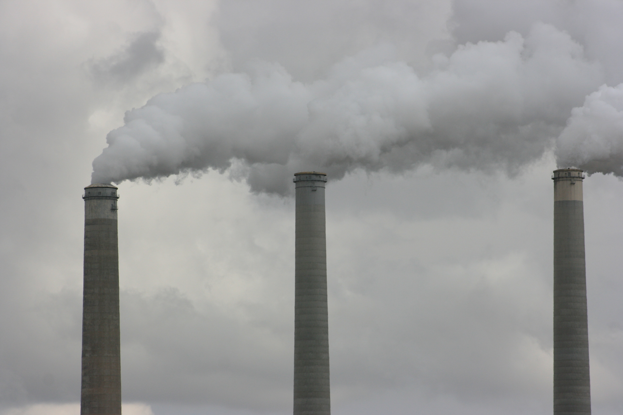 polluting power plants essay Pollution from coal-fired power plants from the the pollution caused by coal plants is equivalent to pollution caused by nine other top polluting industries.
