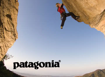 Patagonia: Lessons from a Pioneer in Responsible Business