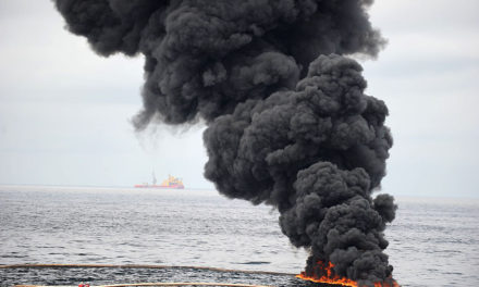 The Gulf of Mexico Three Years After BP Oil Spill