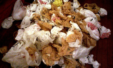 Banning Plastic Bags: What Next?